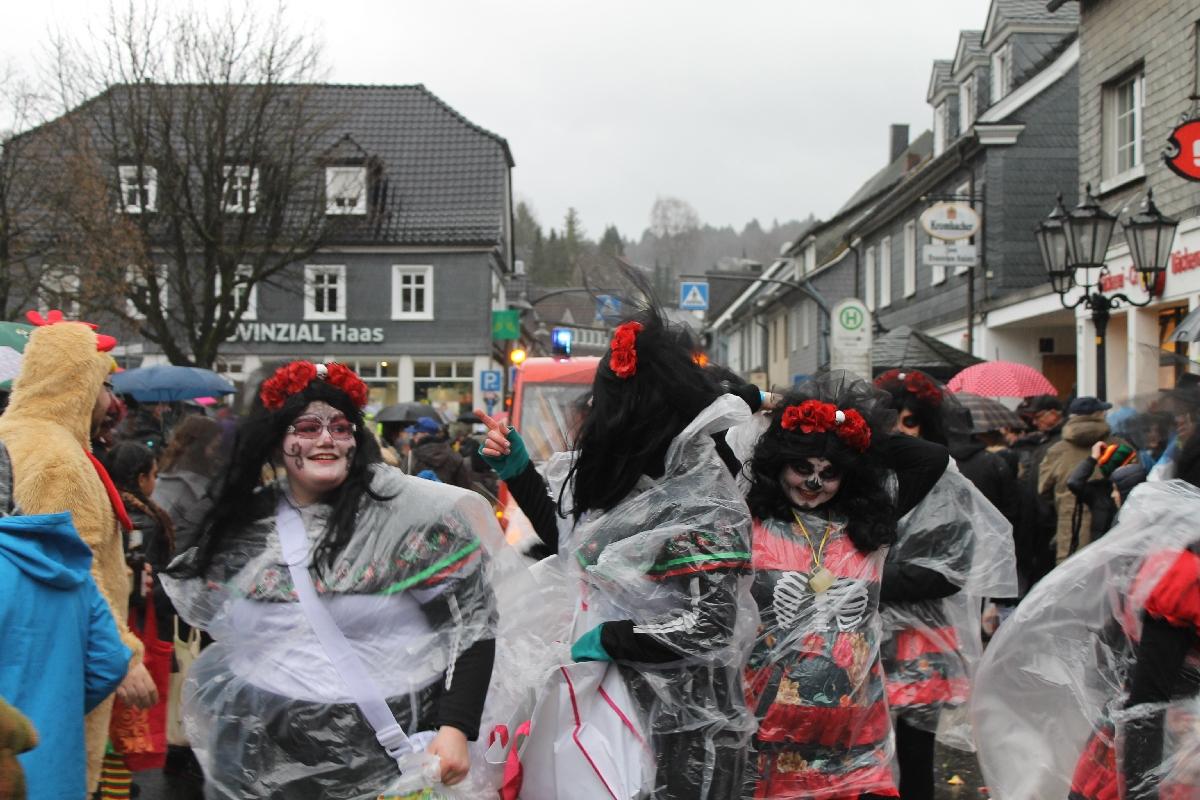 karneval_X2017_11201