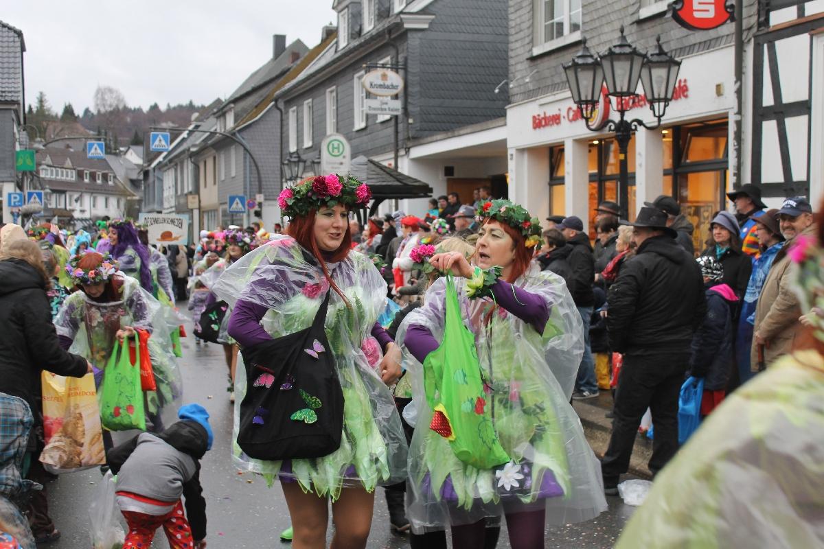 karneval_X2017_8401