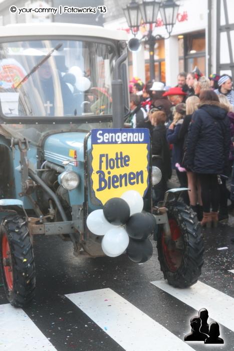 karneval2013-338