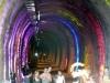 Tunneleroef_12x_4