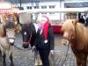 weihnachtsmarkt2013-027